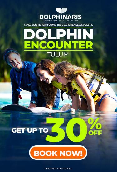Dolphinaris Tulum discount