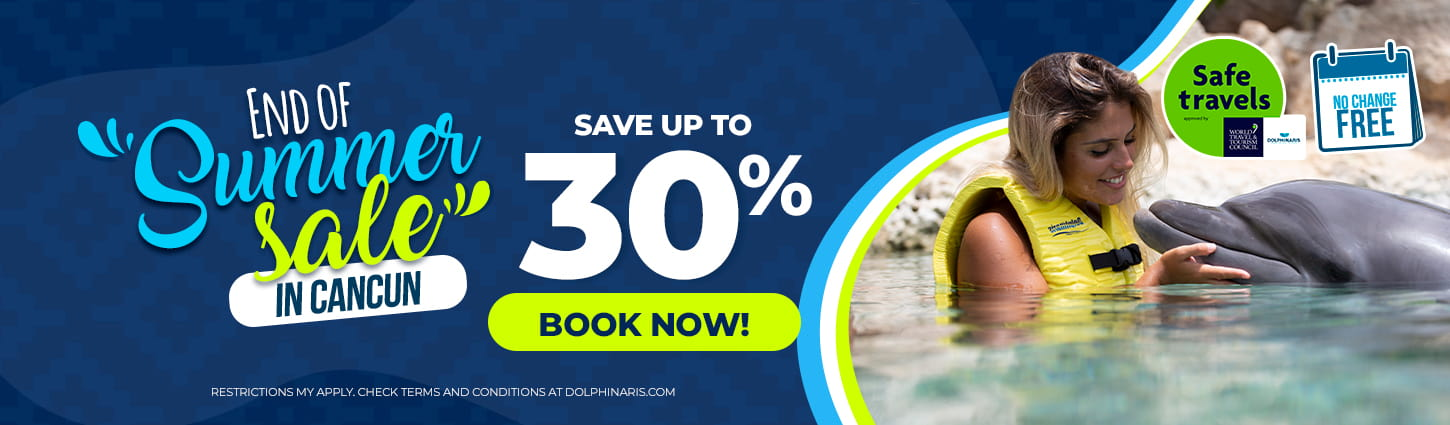 End of the summer sale at Dolphinaris