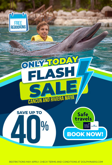 Flash Sale at Dolphinaris