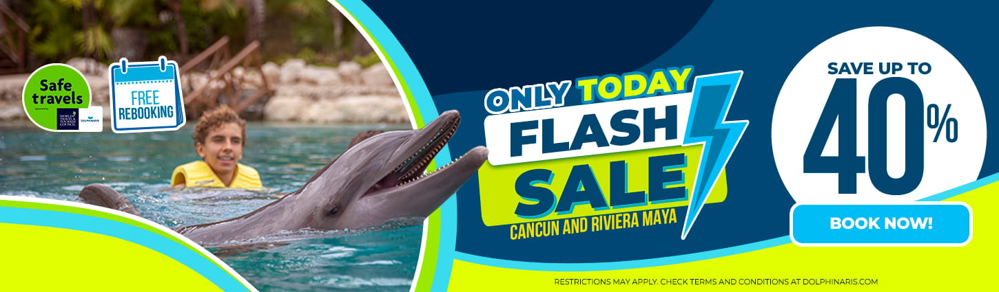 Sale at Dolphinaris