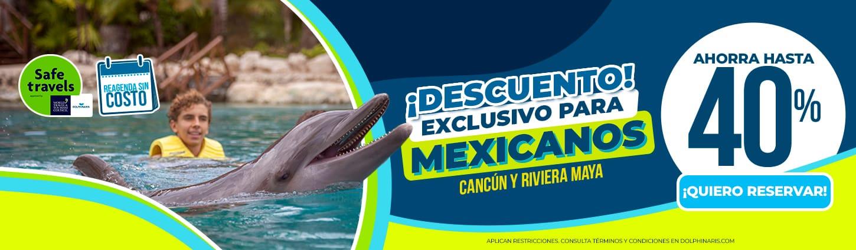 Precios especiales en nados con delfines