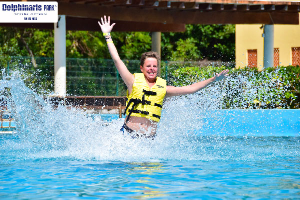 5 best places for dolphin swims in the riviera maya rmpark