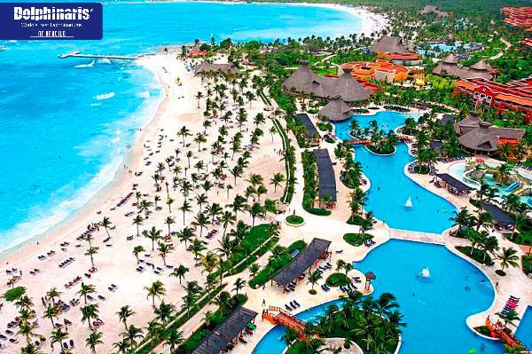 5 mejores lugares para delfín nada en la riviera maya y Hotel Barceló Bahía Principe