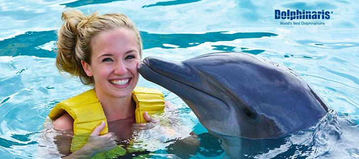 Encuentra los MEJORES precios para nado con delfines en Cancún [4 Paso guía de cómo hacerlo]