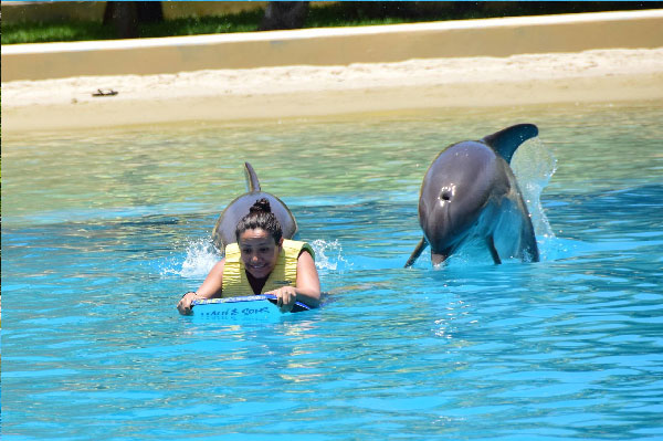 Entrenador por un día en Dolphinaris