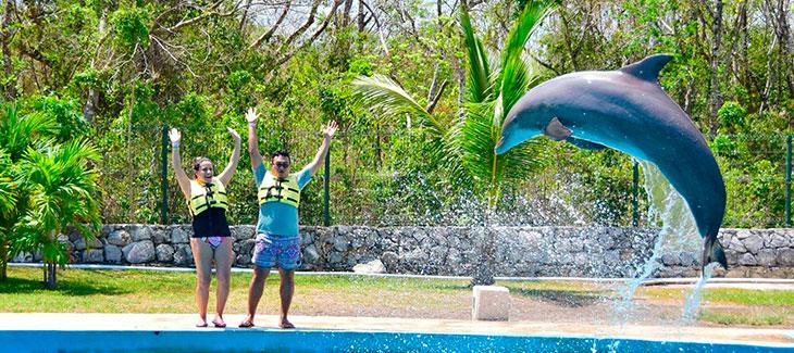 Entrenador por un día en Dolphinaris Riviera Maya