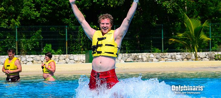Todo acerca de mi EMOCIONANTE nado con delfines en la Riviera Maya