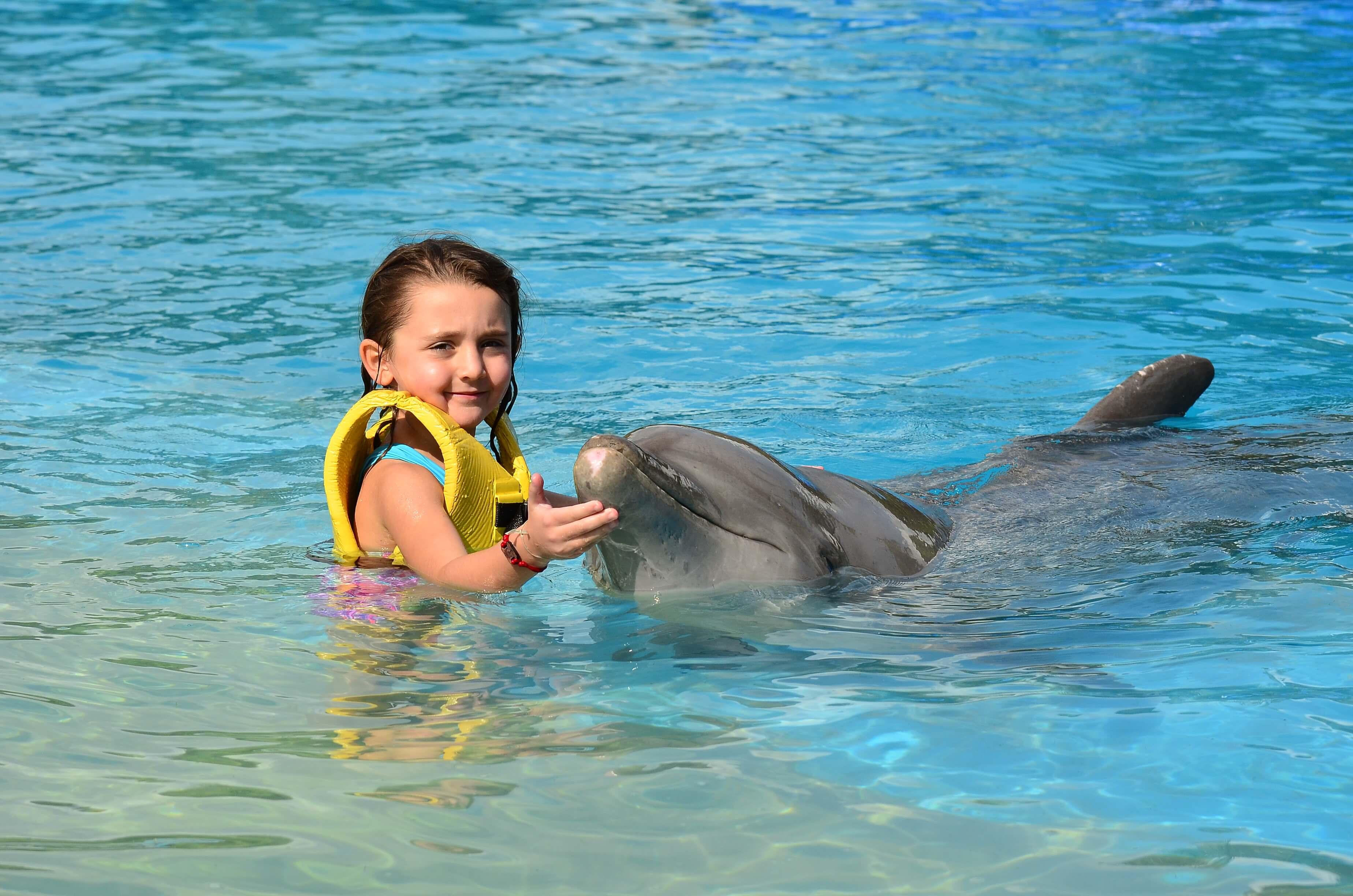 Visitar a los delfines en el Hotel Barceló es una gran opción.