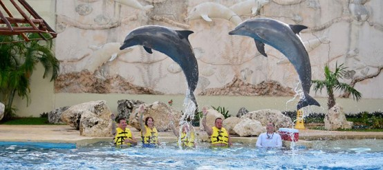 Cancun's best dolphinarium