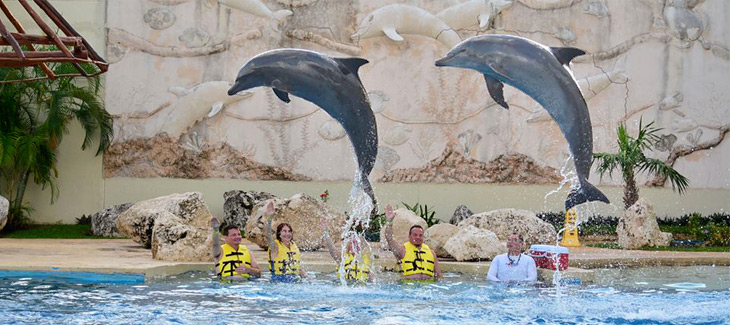 Cancun's Best Dolphinarium!