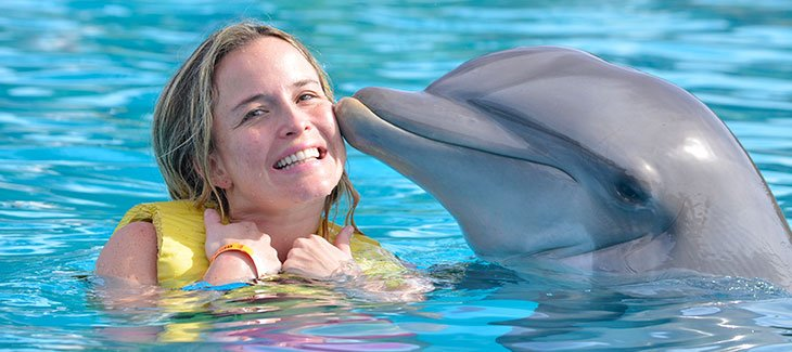 14 best places to swim with Dolphins in the world - Dolphinaris