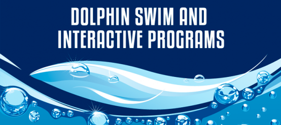 Know our dolphin swim and interactive programs