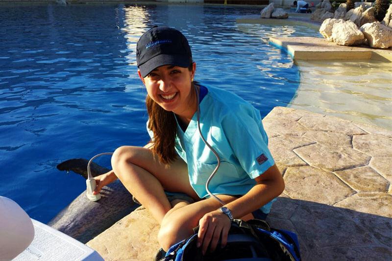 Dolphinaris AQUAVET®III Cancun