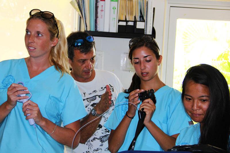 Dolphinaris AQUAVET®III Veterinary students endoscopy