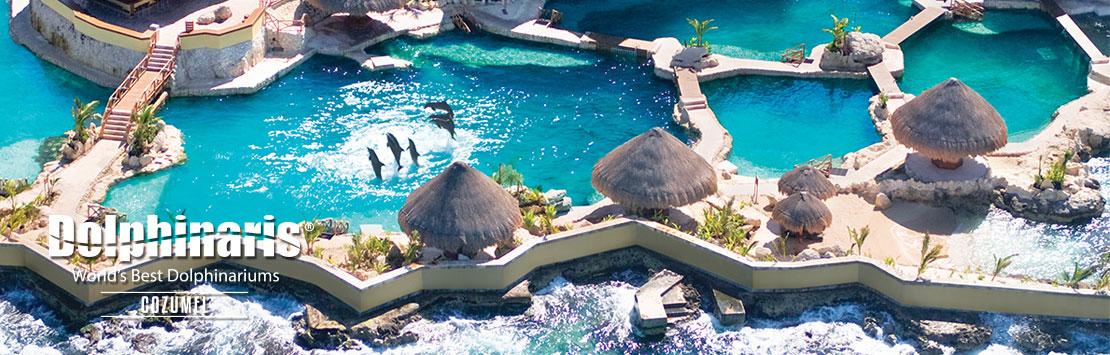 Dolphinaris Cozumel Mexico