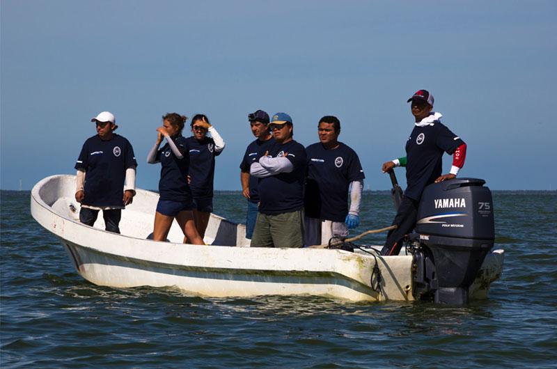 dolphinaris-foundation-conservation-terminos-lagoon-campeche-mexico