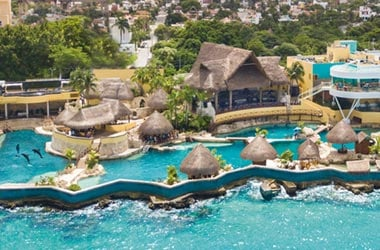 Dolphinaris Cozumel Island Mexico