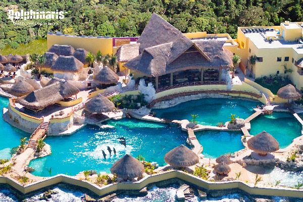 ¿Dónde están los mejores delfinarios en la Riviera Maya? Cozumel