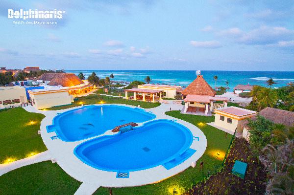 ¿Dónde están los mejores delfinarios en la Riviera Maya? Tulum