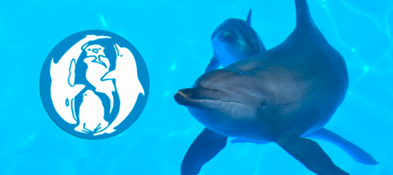 European Association for Aquatic Mammals EAAM