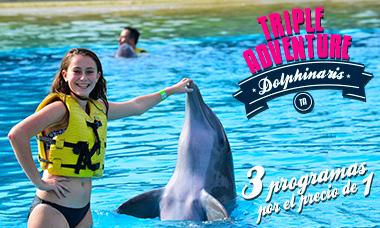 Encuentro con delfines en Playa del Carmen Triple Adventure