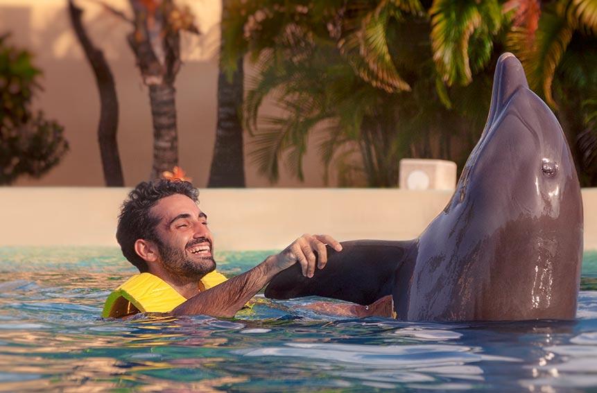 Dolphinaris dolphin swim