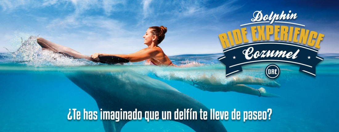 Dolphin Ride Experience en Cozumel