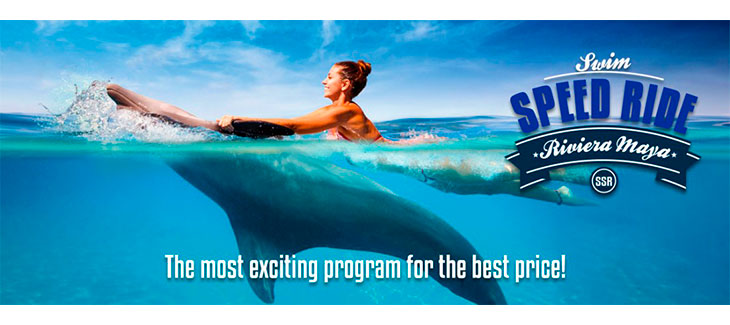 Here are 5 Amazing Playa del Carmen Dolphin Encounters like Speed Ride