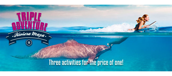 Here are 5 Amazing Playa del Carmen Dolphin Encounters like Triple Adventure