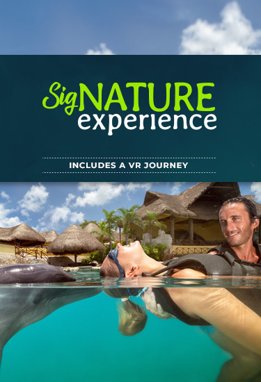 Live a heartwarming adventure throught the SIGNATURE experience