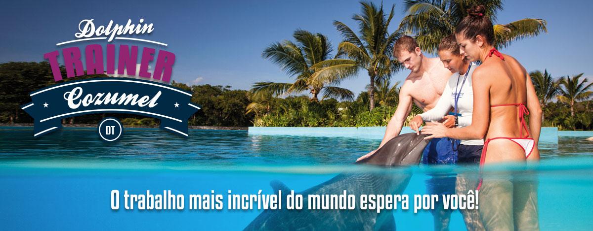Nadar com golfinhos - Programa Treinador de golfinhos em Cozumel.