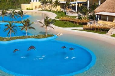Nadar con Delfines en Riviera Maya