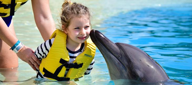 ¿Por qué nadar con delfines es una experiencia de vida para los niños?