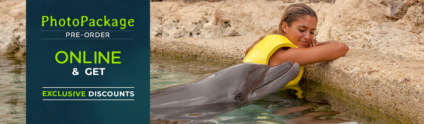 Dolphinaris photo package offer
