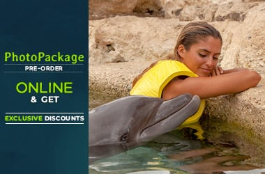 Dolphinaris photo package online