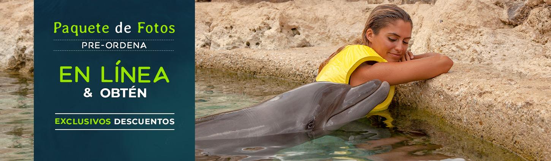 Paquete de fotos Dolphinaris