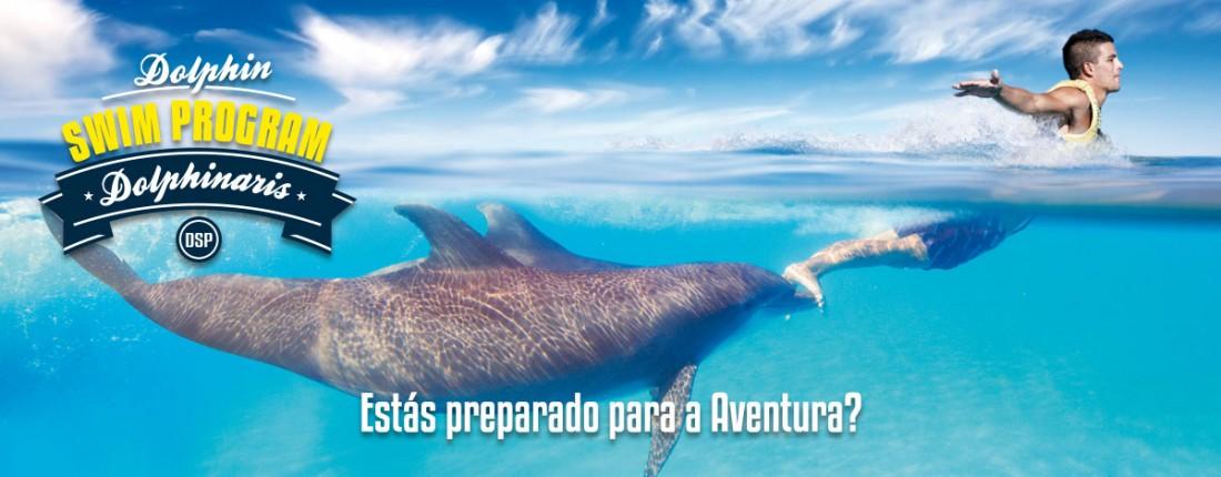 Programa Nado com Golfinho