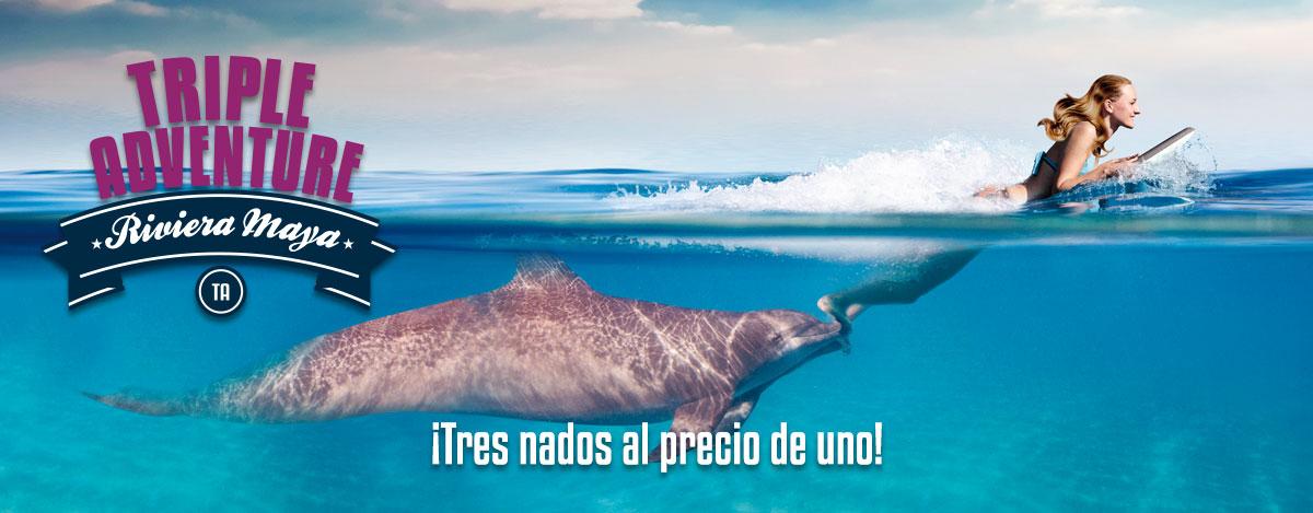 Programa de nado con delfines - Aventura Triple en Dolphinaris Riviera Maya.