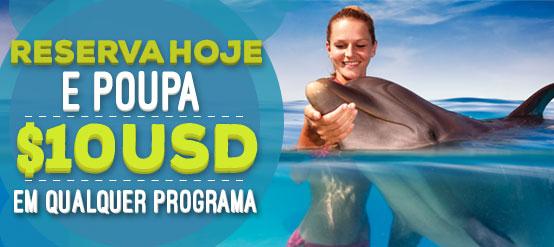 Nado com golfinhos reserva hoje e poupa 10USD em qualquer programa.