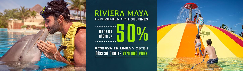 Disfruta de hasta un 50% de descuento en experiencia con delfines en la Riveira Maya