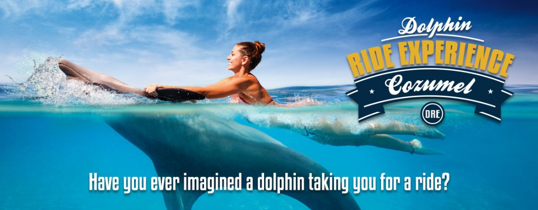 Dolphin Ride Experience in Cozumel