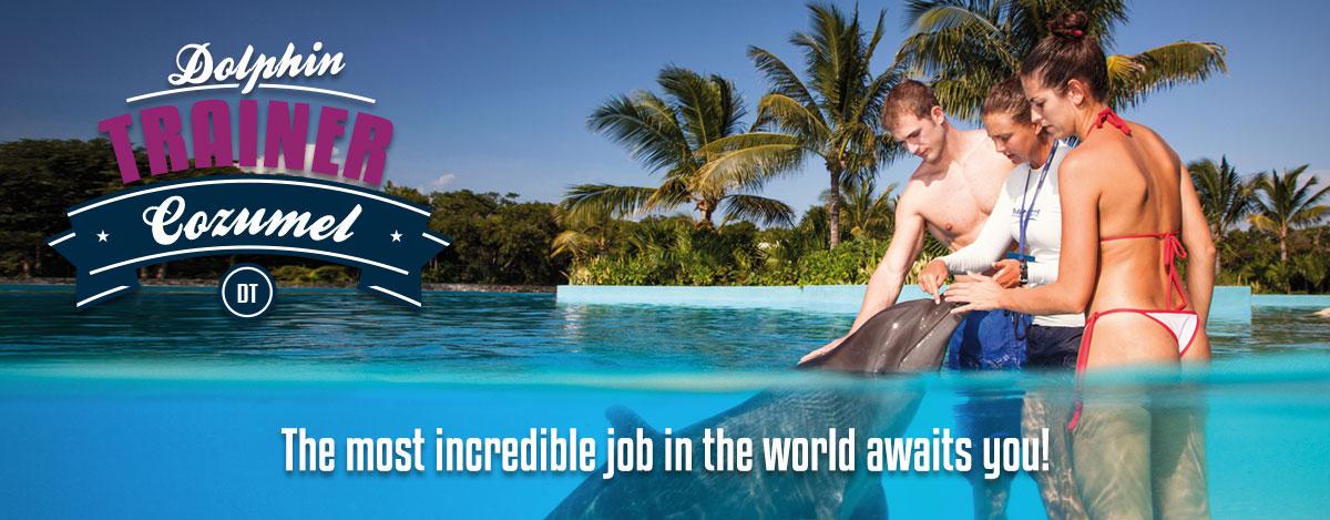 Swim program dolphin trainer in Dolphinaris Cozumel