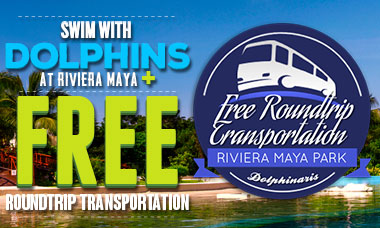 Spring Break Deal: Swim with dolphins in Riviera Maya plus FREE round trip transportation.