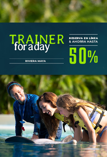 Trainer For a Day Esp