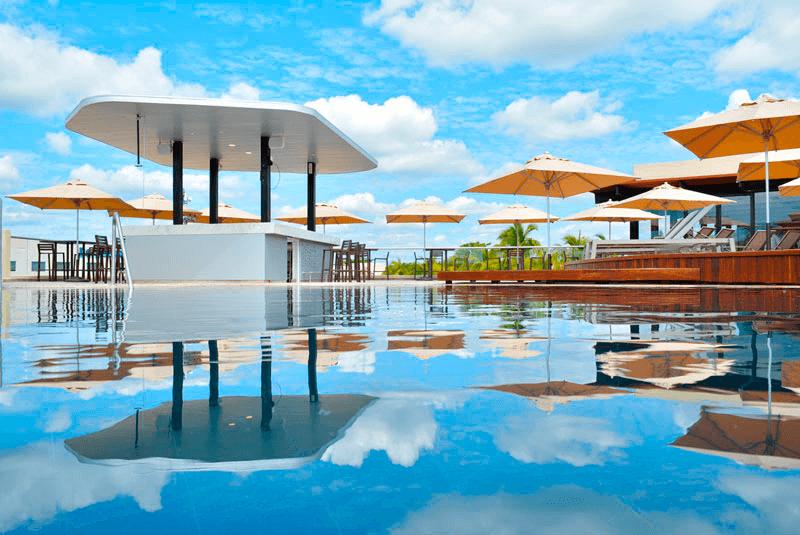 Turismo MICE: Nadar con delfines