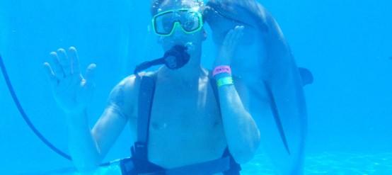El nado con delfines en Dolphinaris es una experiencia incomparable.