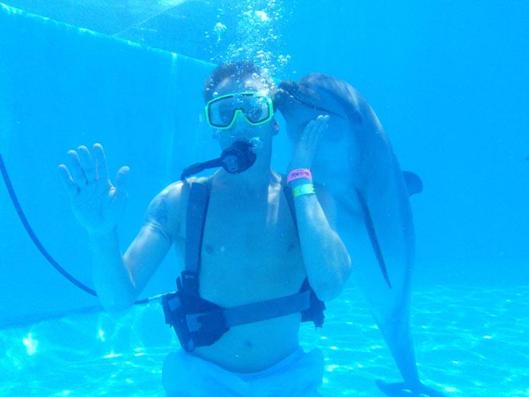 Nadar con delfines: una experiencia incomparable