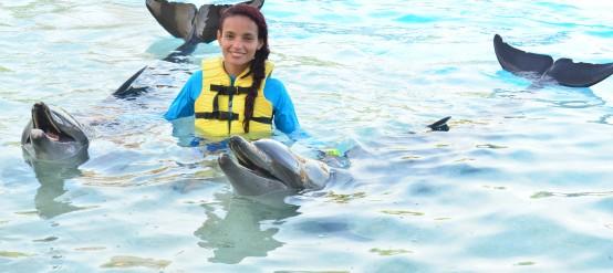 Triple programa de nado con delfines