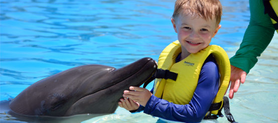 Swim with dolphins and your kids. It's a magical experience.