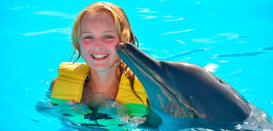 Los mejores lugares para nadar con delfines